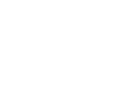Bicycles<br>for your walks!